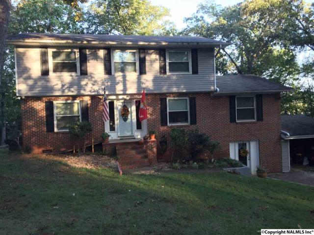 3149 Highway 79, Guntersville, AL 35976 (MLS #1079959) :: Intero Real Estate Services Huntsville