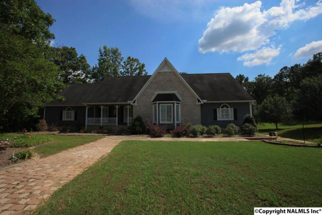 661 Willow Creek Road, Hokes Bluff, AL 35903 (MLS #1080231) :: The Pugh Group RE/MAX Alliance