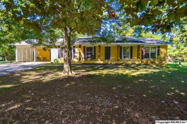 101 Ball Park Road, Laceys Spring, AL 35754 (MLS #1080282) :: Amanda Howard Real Estate™
