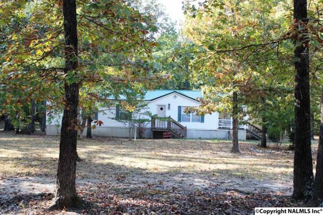 45 County Road 901, Cedar Bluff, AL 35959 (MLS #1080502) :: Amanda Howard Real Estate™