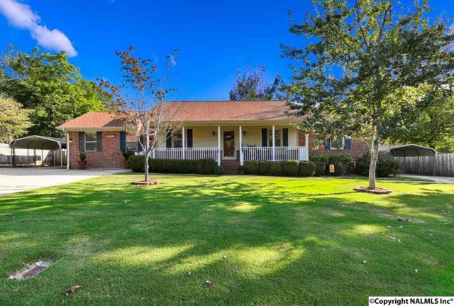 102 Val Sapra Circle, Harvest, AL 35749 (MLS #1080510) :: Amanda Howard Real Estate™