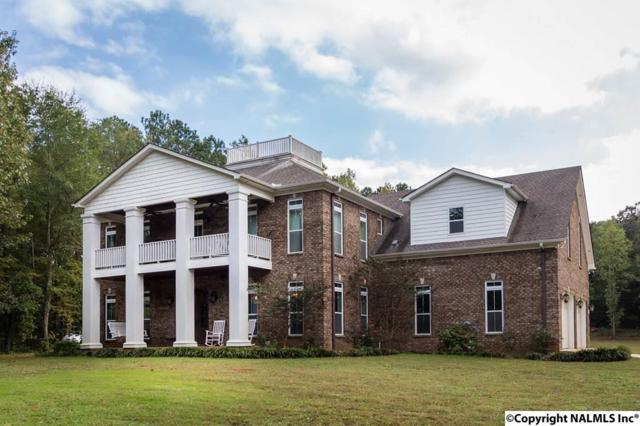 2597 Bluff City Road, Somerville, AL 35670 (MLS #1080549) :: RE/MAX Distinctive | Lowrey Team