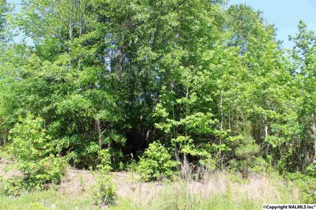 NA County Road 497, Centre, AL 35960 (MLS #1080557) :: Intero Real Estate Services Huntsville