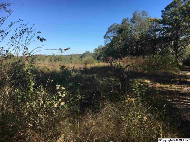 0 Kuydendall Road, Albertville, AL 35951 (MLS #1081385) :: Amanda Howard Real Estate™