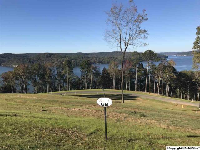 0068 Sunny Brook Farm Road, Guntersville, AL 35976 (MLS #1081480) :: Amanda Howard Real Estate™