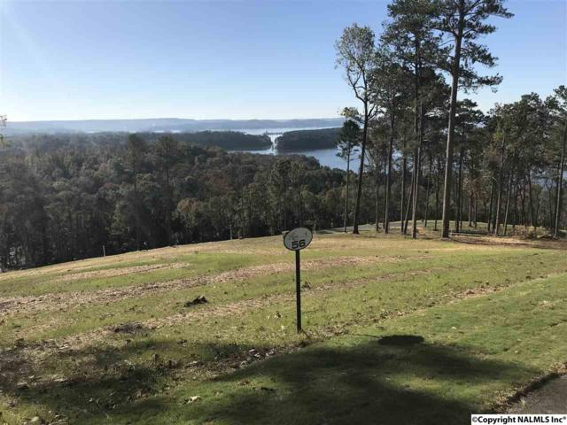 0056 Sunny Brook Farm Road, Guntersville, AL 35976 (MLS #1081498) :: Amanda Howard Real Estate™