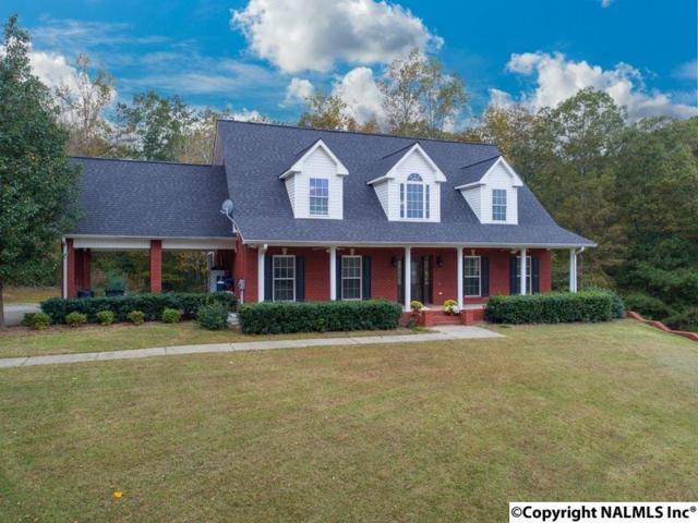 2236 Deer Run Drive, Cullman, AL 35055 (MLS #1081711) :: Amanda Howard Real Estate™