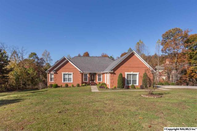 244 Boyd Drive, Gadsden, AL 35901 (MLS #1081912) :: Amanda Howard Real Estate™