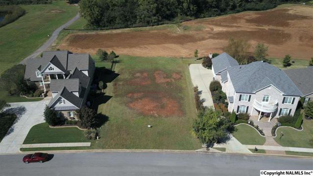 34 Walnut Cove Boulevard, Huntsville, AL 35824 (MLS #1082059) :: Amanda Howard Real Estate™