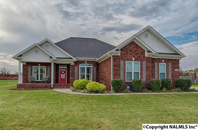 244 Wes Ashley Drive, Meridianville, AL 35759 (MLS #1082084) :: Capstone Realty
