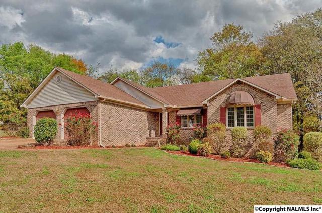 24430 Buckeye Lane, Elkmont, AL 35620 (MLS #1082087) :: Amanda Howard Real Estate™