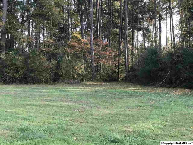 0 SW Neighbors Lane, Hartselle, AL 35640 (MLS #1082095) :: Amanda Howard Real Estate™