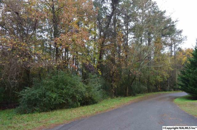 lot 11 Neely Avenue, Guntersville, AL 35976 (MLS #1082228) :: Amanda Howard Real Estate™