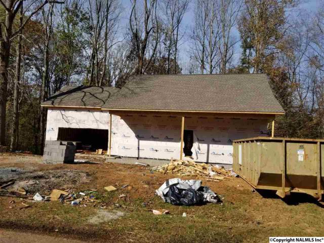18175 Sulfur Creek Drive, Elkmont, AL 35620 (MLS #1082233) :: Amanda Howard Real Estate™