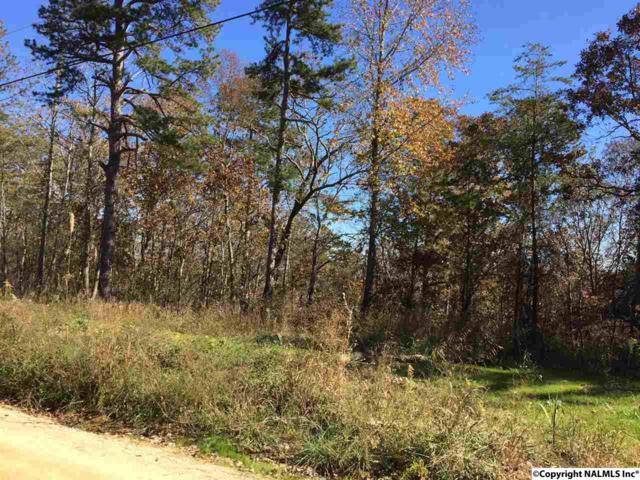 County Road 861, Gaylesville, AL 35973 (MLS #1082245) :: Amanda Howard Real Estate™