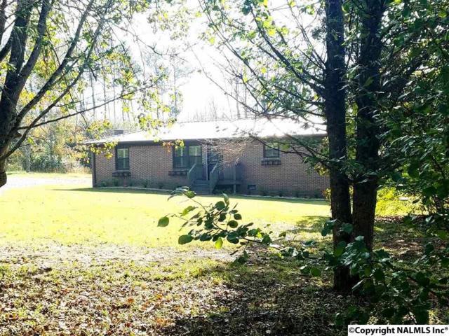 130 Fortenberry Road, Guntersville, AL 35976 (MLS #1082424) :: Amanda Howard Real Estate™