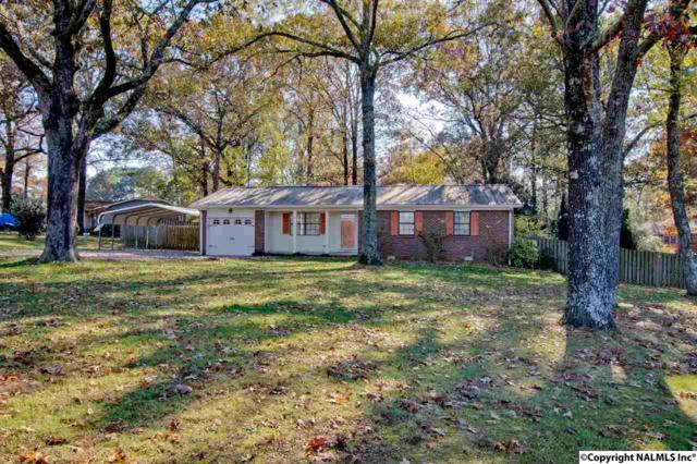 100 Vasser Circle, Harvest, AL 35749 (MLS #1082454) :: Capstone Realty
