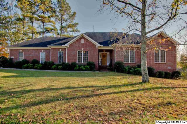 121 Iron Horse Trail, Harvest, AL 35749 (MLS #1082461) :: Capstone Realty