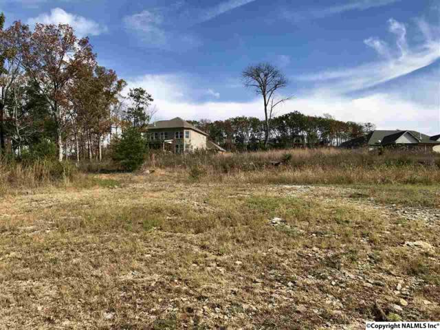 2820 High Mountain Road, Huntsville, AL 35811 (MLS #1082515) :: Capstone Realty
