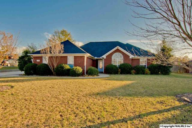 216 Turkey Point Drive, New Market, AL 35761 (MLS #1082541) :: Capstone Realty