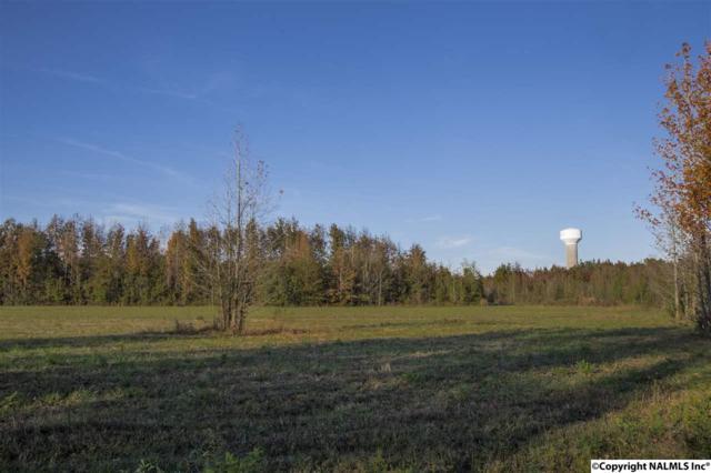 0 Huntsville Brownsferry Road, Madison, AL 35756 (MLS #1082566) :: Capstone Realty