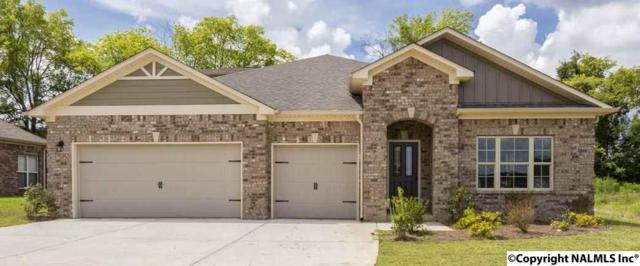 7620 NW Ashor Drive, Huntsville, AL 35806 (MLS #1082581) :: Amanda Howard Real Estate™
