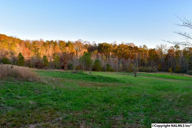 0 Mountain View Road, Union Grove, AL 35175 (MLS #1082593) :: Capstone Realty