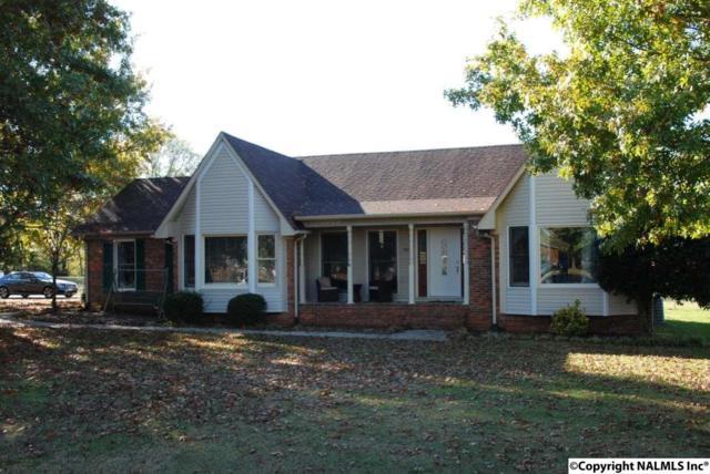 100 Whitewater Bend, Hazel Green, AL 35750 (MLS #1082627) :: Amanda Howard Real Estate™