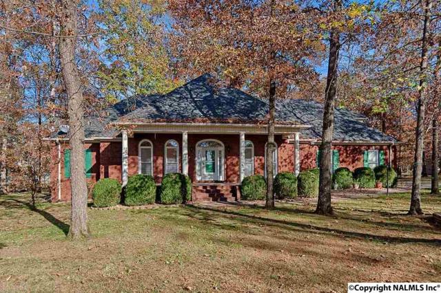 127A Phantom Drive, Toney, AL 35773 (MLS #1082684) :: Amanda Howard Real Estate™