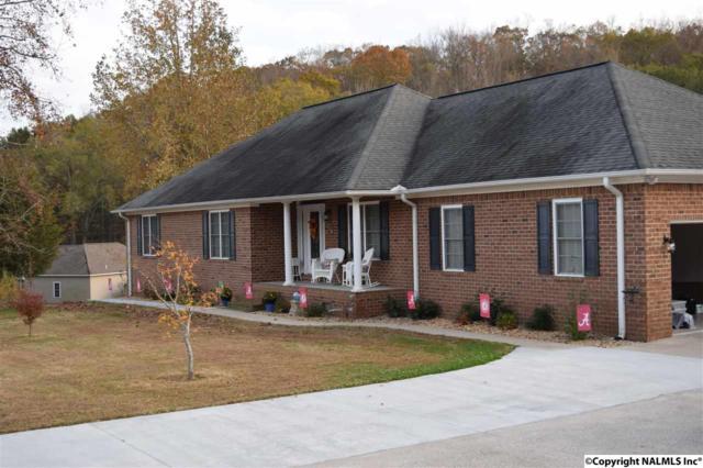 77 Deer Run, Guntersville, AL 35976 (MLS #1082710) :: Amanda Howard Real Estate™