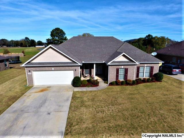 209 Hope Ridge Drive, New Hope, AL 35760 (MLS #1082793) :: RE/MAX Distinctive | Lowrey Team