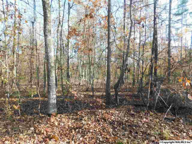 Lot 13 County Road 667, Cedar Bluff, AL 35959 (MLS #1082859) :: RE/MAX Distinctive | Lowrey Team