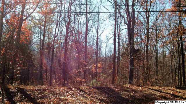 Range Road, Gurley, AL 35748 (MLS #1082972) :: RE/MAX Distinctive | Lowrey Team