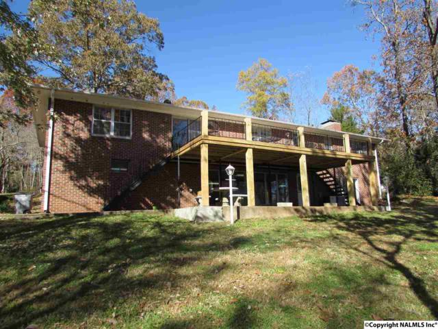 136 Julia Circle, Rogersville, AL 35652 (MLS #1083111) :: Amanda Howard Real Estate™