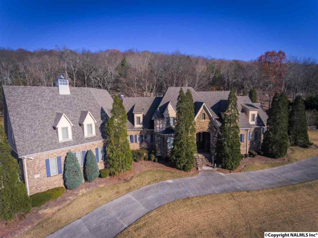 885 King Drake Road, Brownsboro, AL 35741 (MLS #1083191) :: RE/MAX Distinctive | Lowrey Team