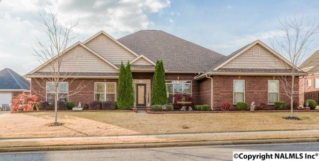 464 Nature's Way, Huntsville, AL 35824 (MLS #1083199) :: Intero Real Estate Services Huntsville