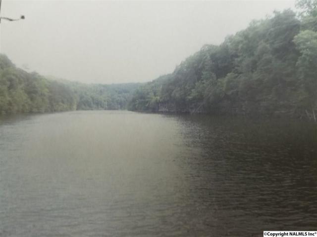 11 Lakeside Estates Road, Arley, AL 35541 (MLS #1083236) :: RE/MAX Alliance