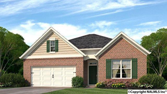 114 Oak Path Lane, Harvest, AL 35749 (MLS #1083304) :: Amanda Howard Real Estate™