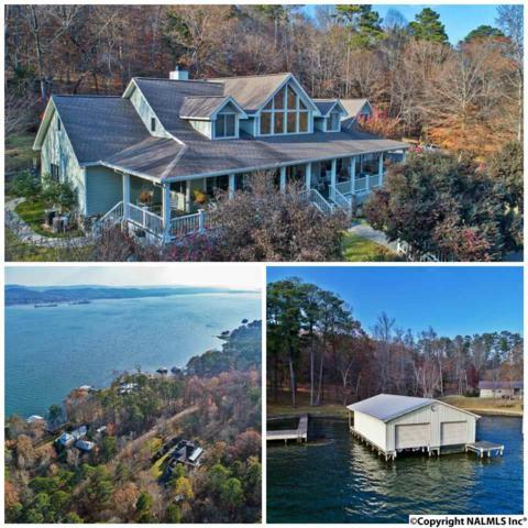 411 Island Drive, Scottsboro, AL 35769 (MLS #1083357) :: Amanda Howard Real Estate™
