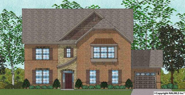 134 Sougahatchee Drive, New Market, AL 35761 (MLS #1083378) :: Amanda Howard Real Estate™