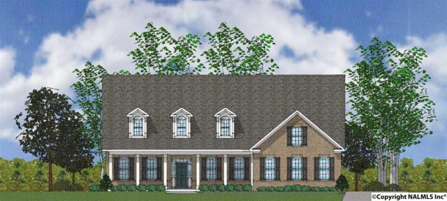 136 Sougahatchee Drive, New Market, AL 35761 (MLS #1083380) :: Amanda Howard Real Estate™