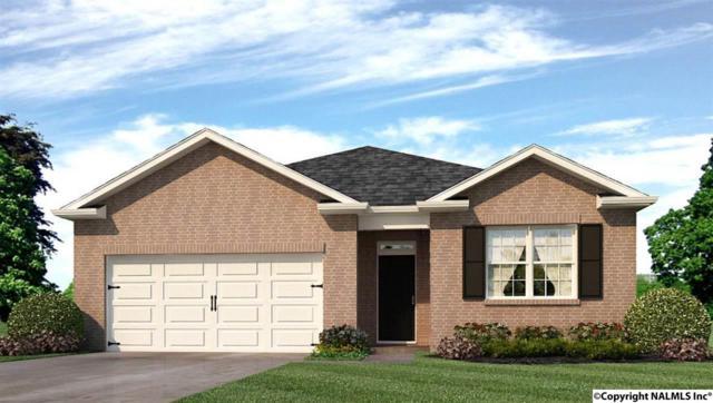 110 Oak Path Lane, Harvest, AL 35749 (MLS #1083556) :: Amanda Howard Real Estate™
