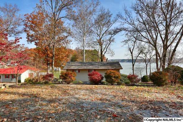 486 Elk River Shores Drive, Rogersville, AL 35652 (MLS #1083568) :: Amanda Howard Real Estate™