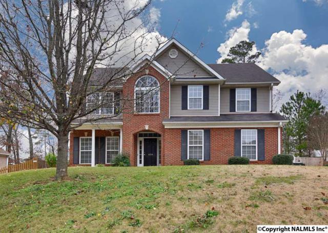 204 Fieldridge Lane, Harvest, AL 35749 (MLS #1083611) :: Legend Realty