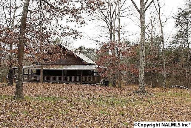 754 County Road 264, Fort Payne, AL 35967 (MLS #1083647) :: Amanda Howard Real Estate™