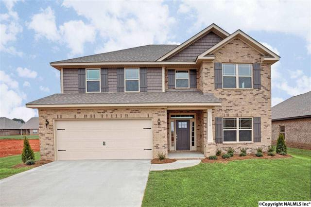229 Rowan Street, Meridianville, AL 35759 (MLS #1083651) :: Amanda Howard Real Estate™