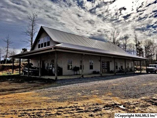 2325 County Road 50, Vinemont, AL 35179 (MLS #1083687) :: Amanda Howard Real Estate™