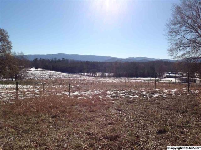 94 Masters Way, Piedmont, AL 36272 (MLS #1083697) :: Amanda Howard Real Estate™