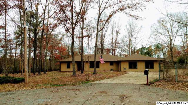 424 Waldrop Road, Rainbow City, AL 35906 (MLS #1083704) :: Amanda Howard Real Estate™