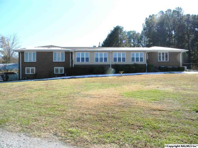 3421 Mountain View Drive, Southside, AL 35907 (MLS #1083741) :: Amanda Howard Real Estate™